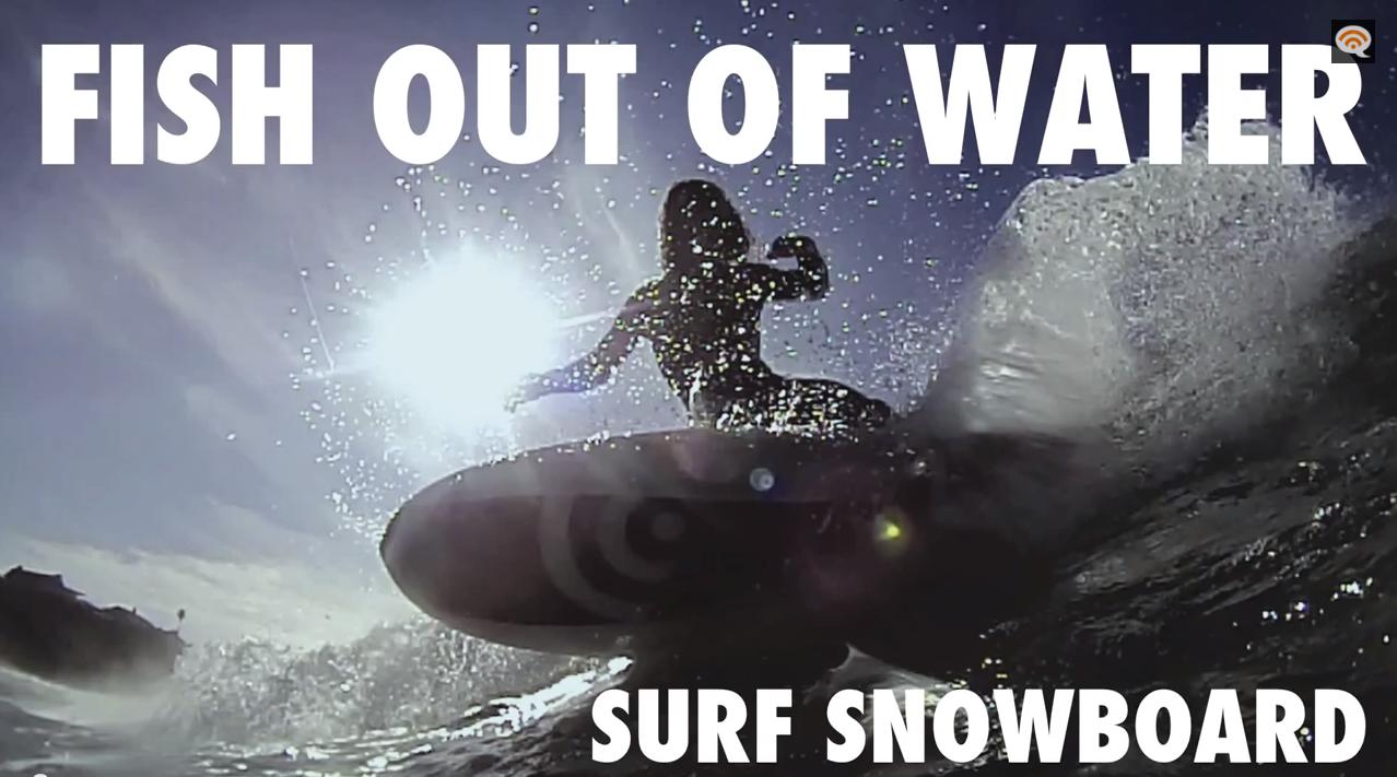 surfsnowboard